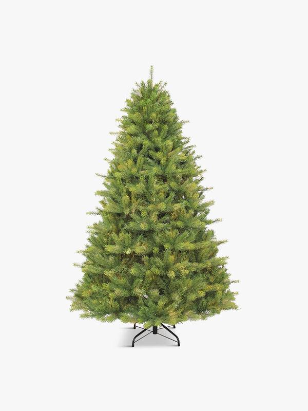 Kensington Tree 240cm