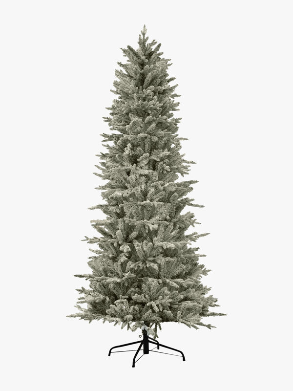 Slim Northern Flocked Fir Tree