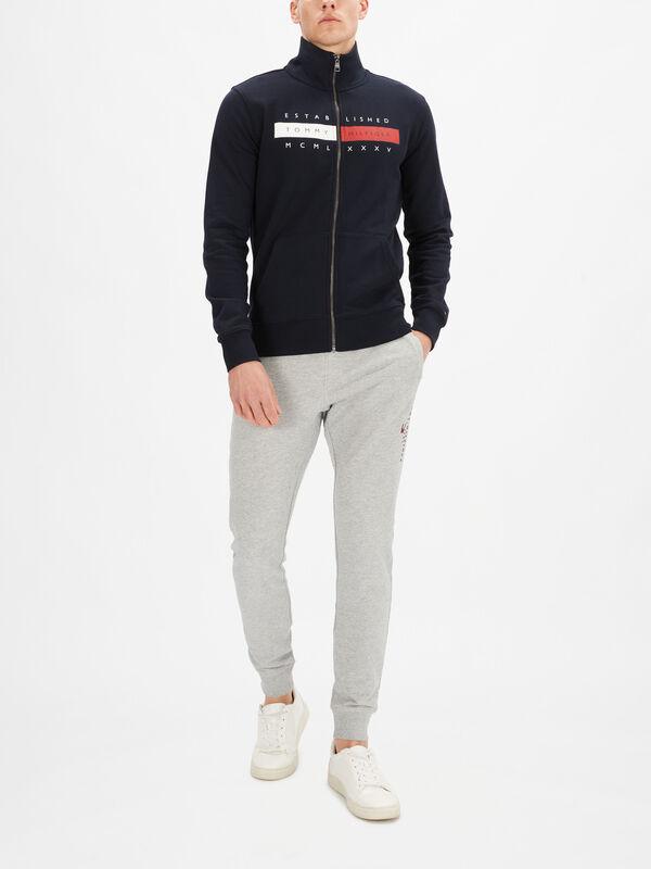 Global Stripe Zip Hoodie