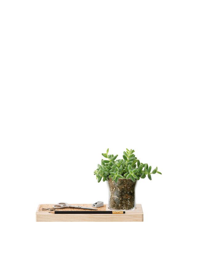 Plateau Planter Set 28cm