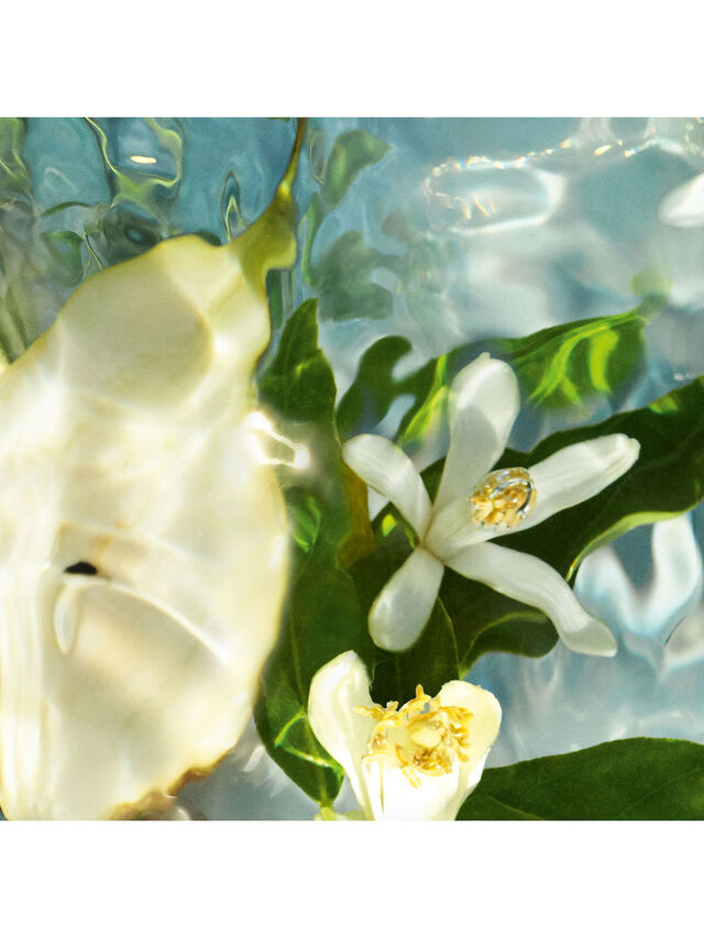 Aqua Allegoria Pera Granita 75ml