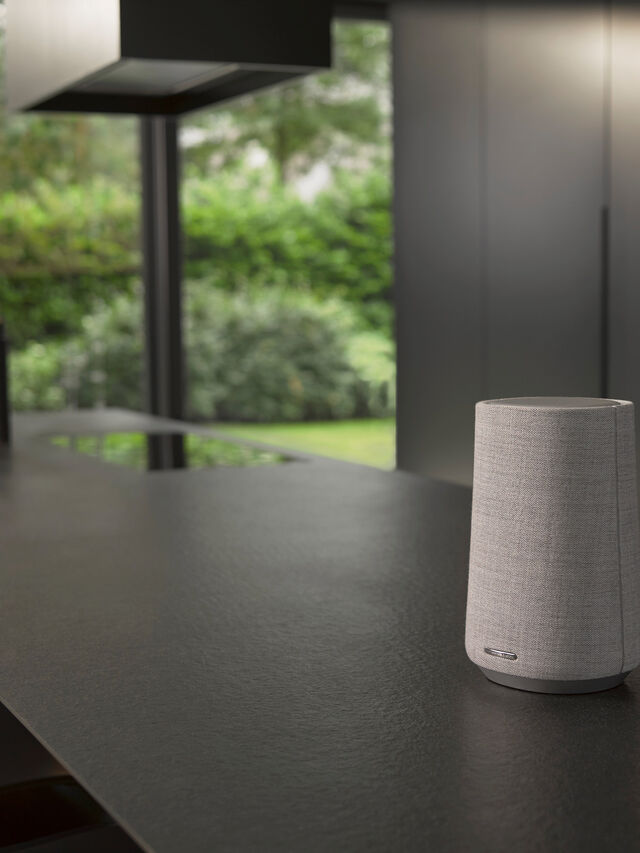 Citation 100 MKII Google Assist Speaker
