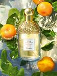 Aqua Allegoria Mandarine Basilic Eau de Toilette & Body Lotion Set