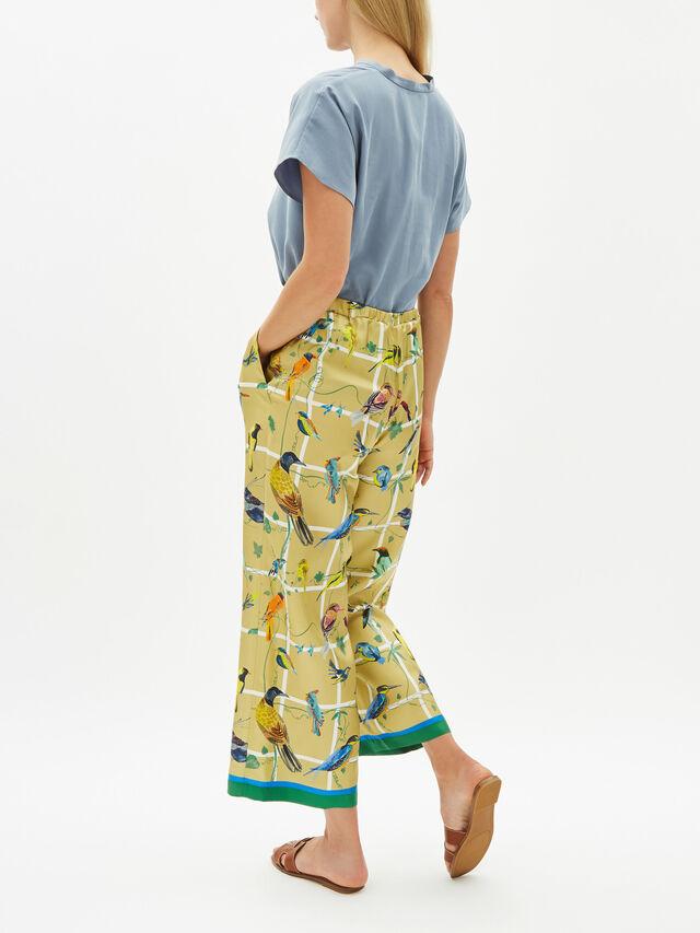 Filmato Long Pants