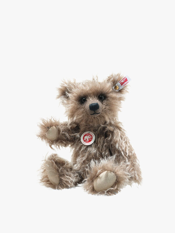 Grizzly Ted Cub