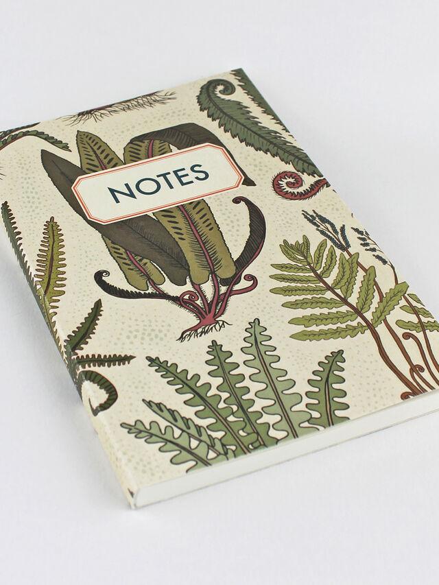 Notebook Ferns