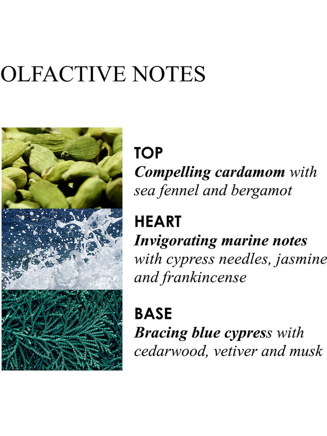 Coastal Cypress And Sea Fennel Fragrance Collection