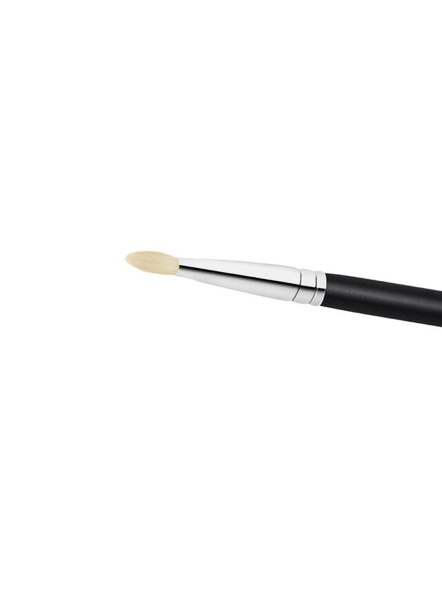 239S Eye Shader Brush
