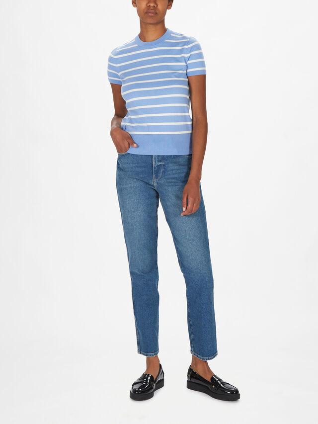 Stripe Polo Short Sleeve Sweater