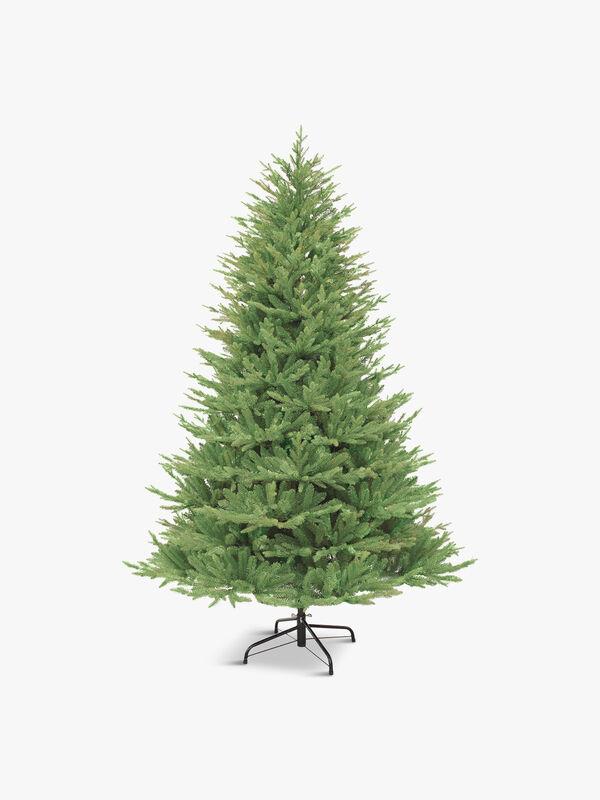 Keswick Pine Tree 240cm