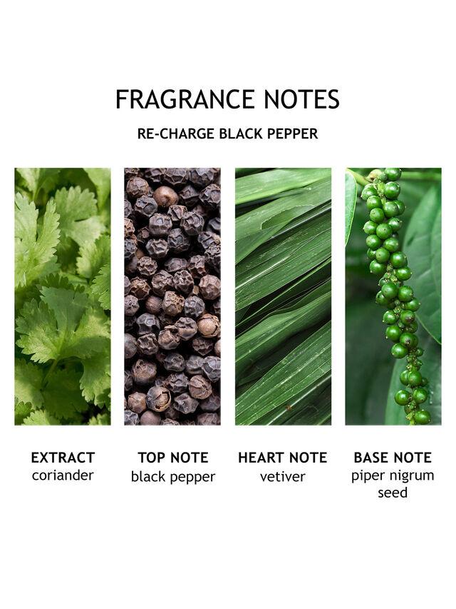 Re-charge Black Pepper Eau de Toilette 100 ml