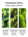 Coastal Cypress & Sea Fennel Eau de Toilette 50 ml