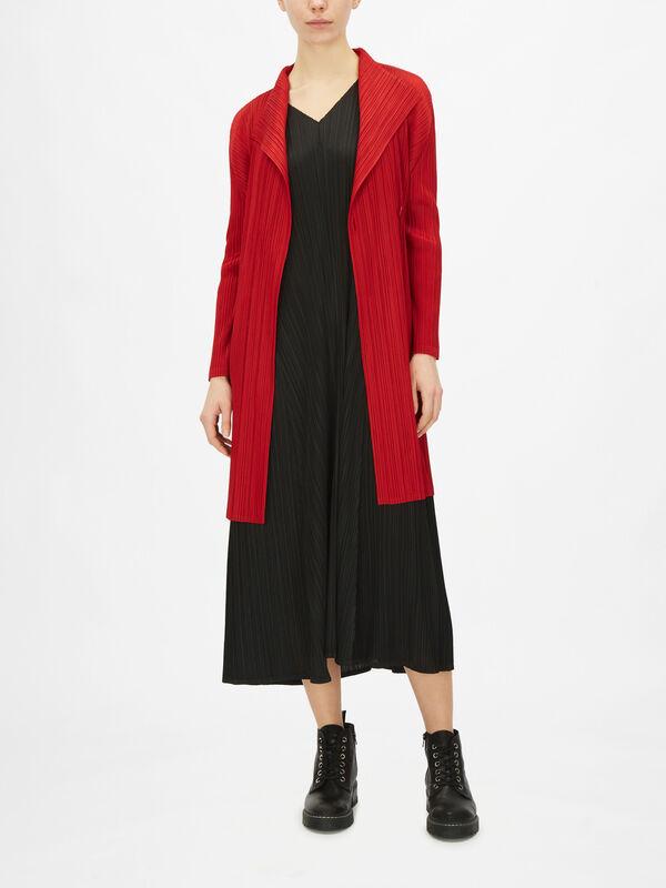 November Coat