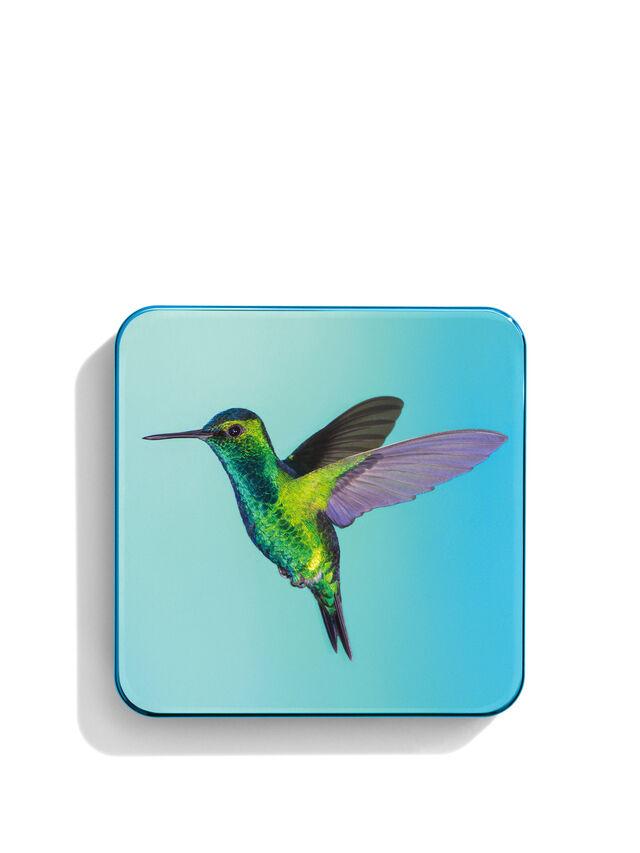 Hummingbird Quartet Limited Edition