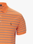 Striped Pima Polo