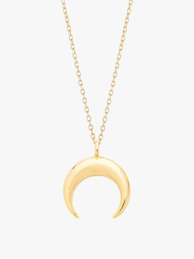 Curved Horn Necklace