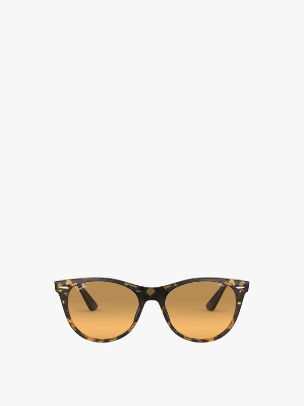Classic-Round-Acetate-Sunglasses-Rayban