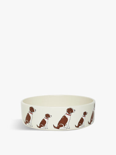 Large Springer Spaniel Dog Bowl