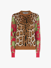 Sweater-0001038281