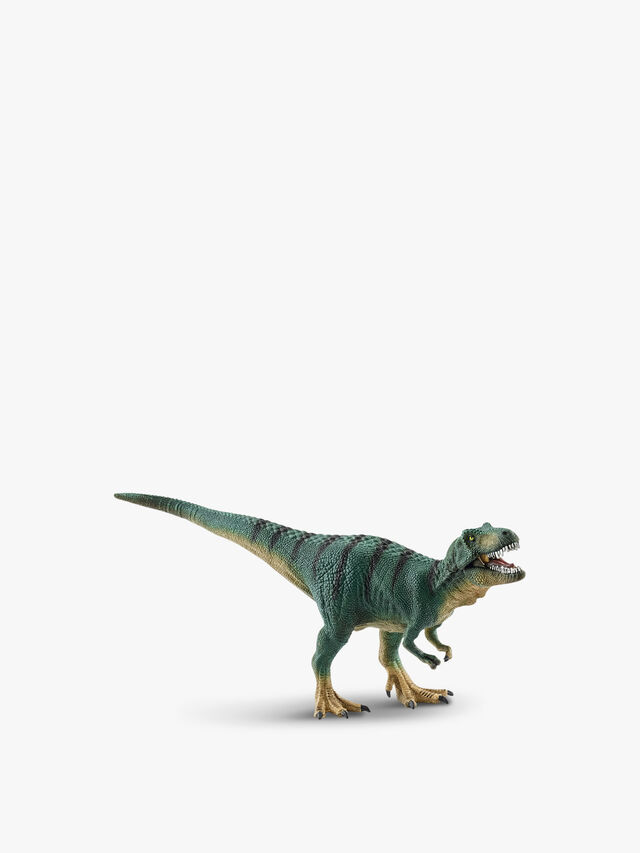 Tyrannosaurus Rex Juvenile Dinosaur