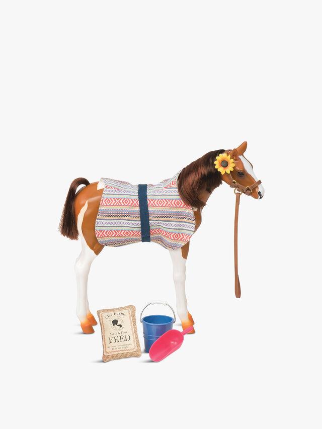 Pinto Paso Fino Foal