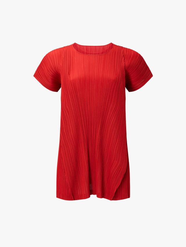Skew Wide Sleeve Dress