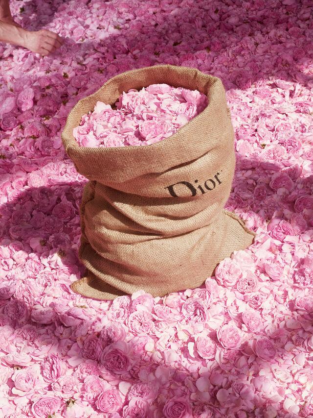 Miss Dior Blooming Bouquet Eau de Toilette 100ml