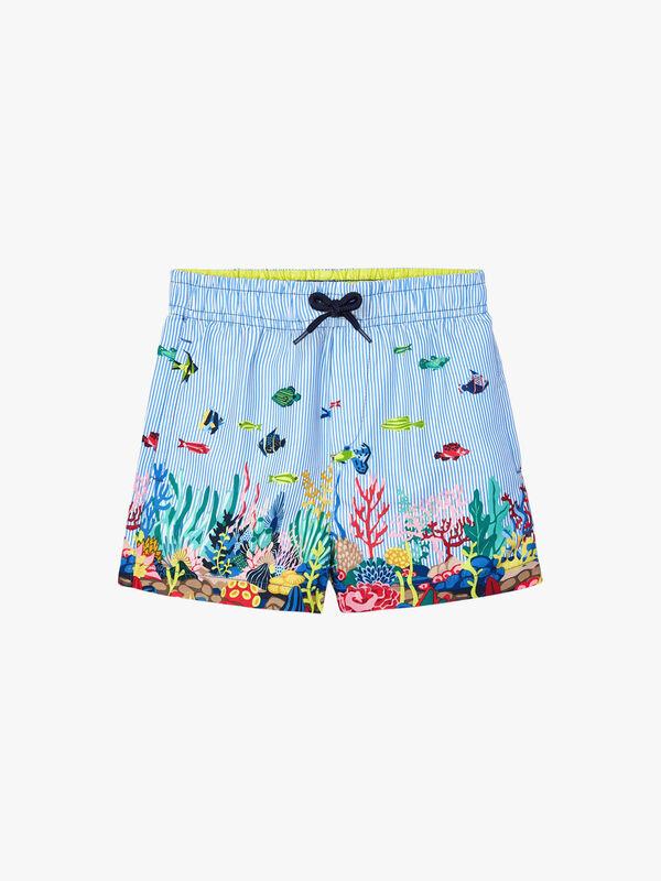 Fish Swimshort