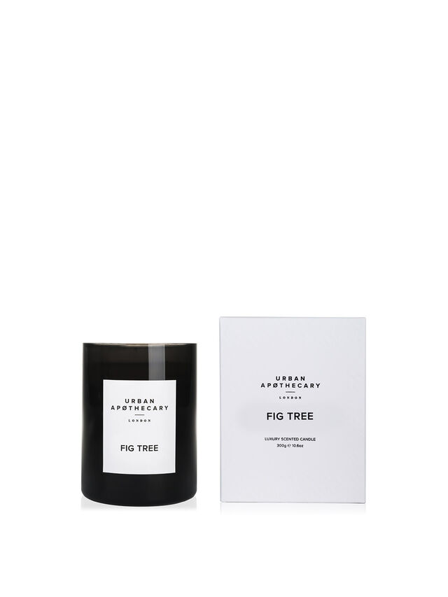 Fig TreeLuxury Candle