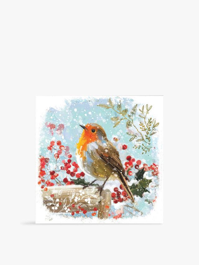 Robin Red Breast Card Packs