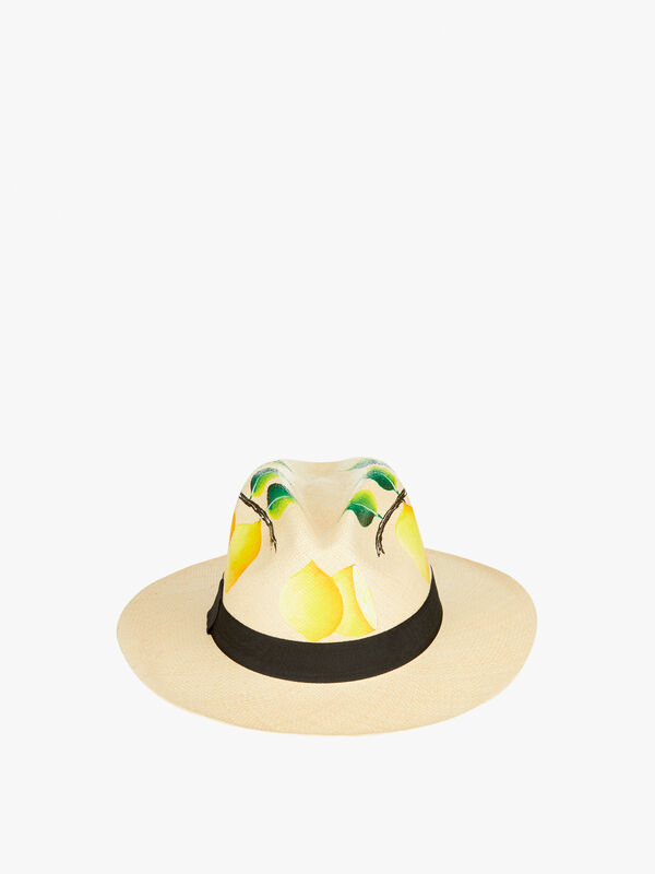 LEMONS-AND-LEAVES-HAT-Nadia-C