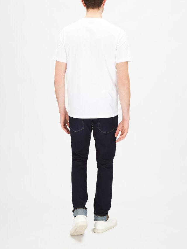 Gradient Zebra T-Shirt