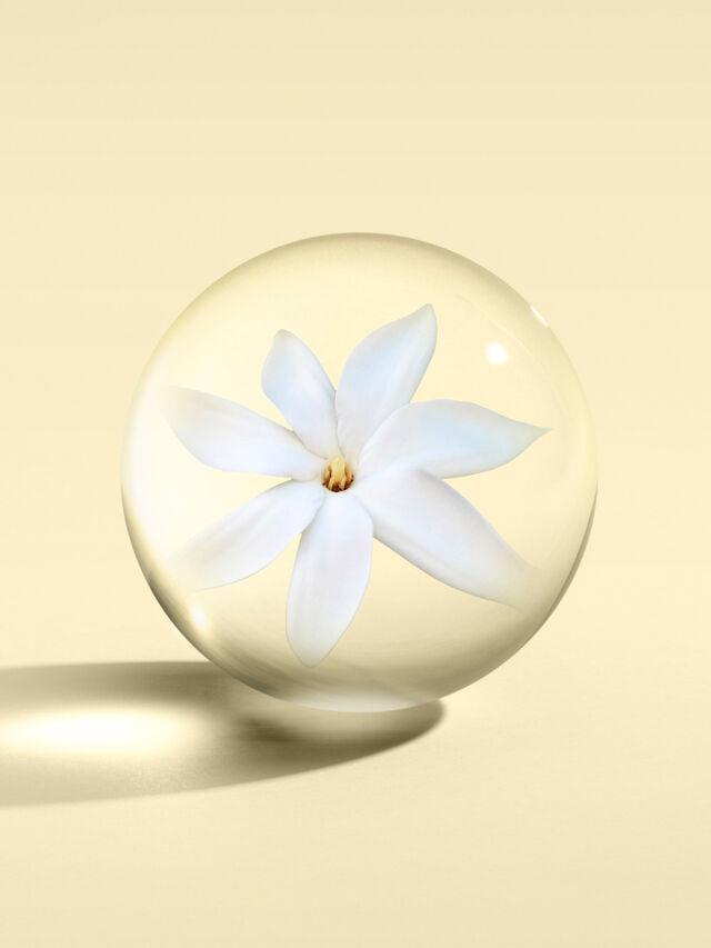 Flora Luminare Eau de Toilette 50ml