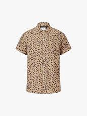 SS-Cheetah-Spot-0001048345