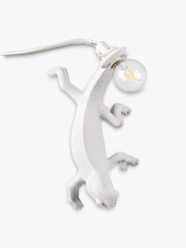 Going Down Chameleon Lamp