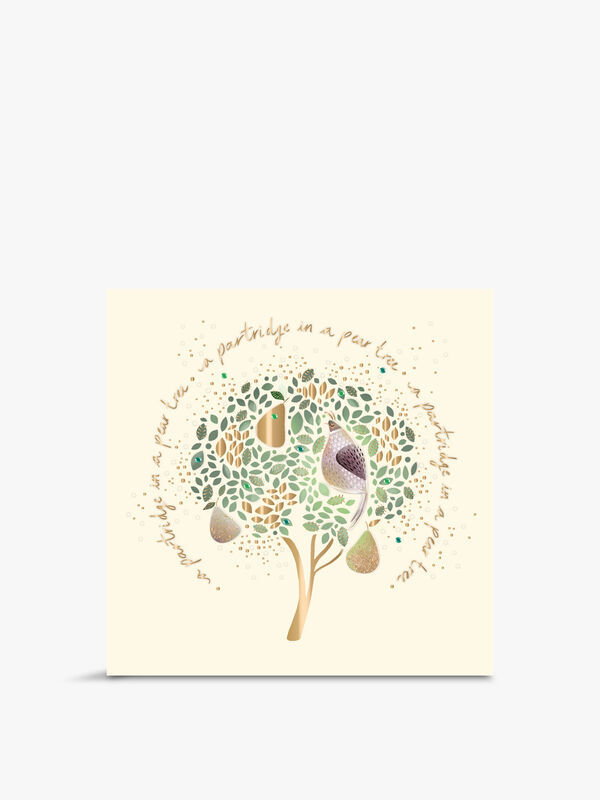 Partridge In A Pear Tree Boxed Cards