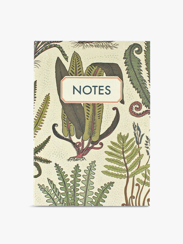 Notebook Ferns