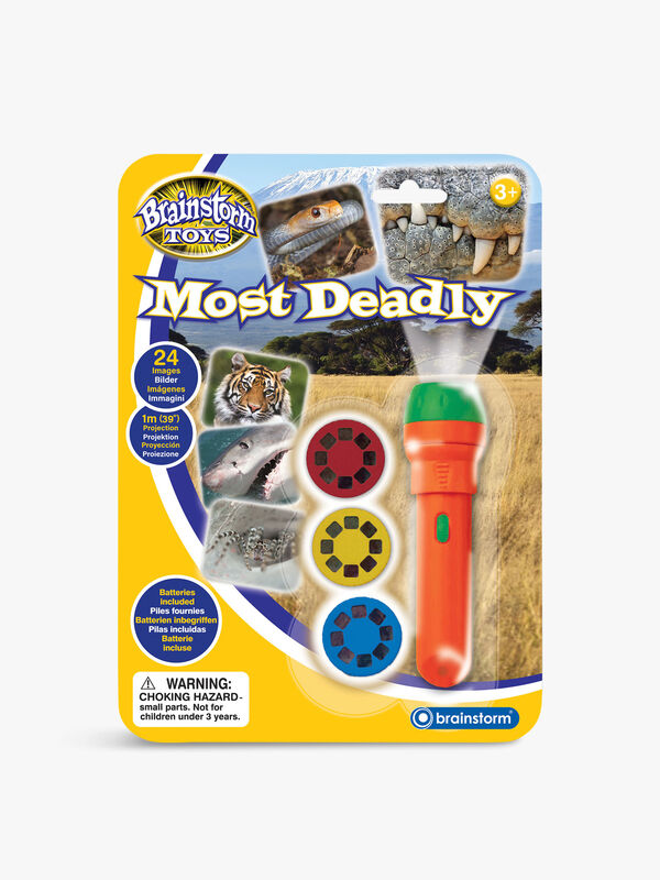 Most Deadly Torch And Projector