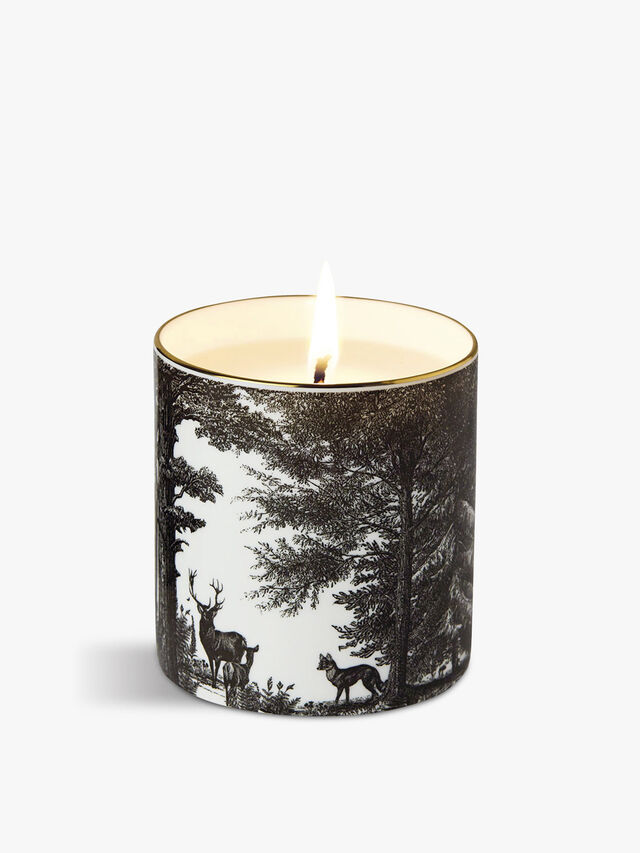 The Enchanted Forest Fine China Scented Candle