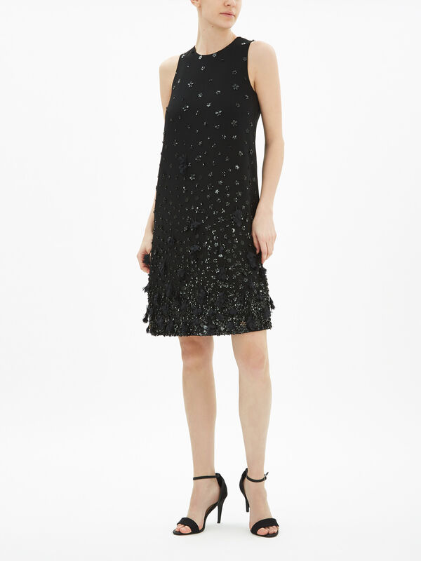 Nostoc Embellished Dress