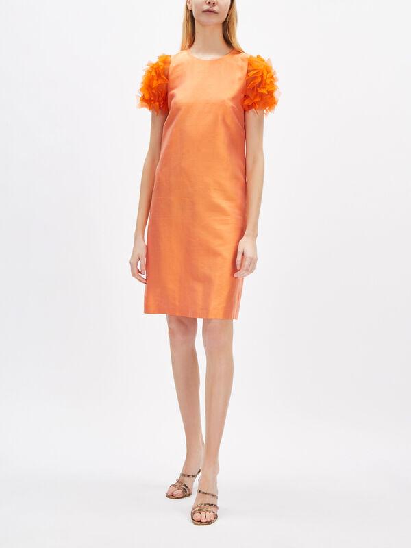 Franca Embellished Sleeve Dress