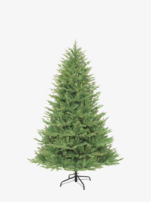 Keswick Pine Tree 225cm