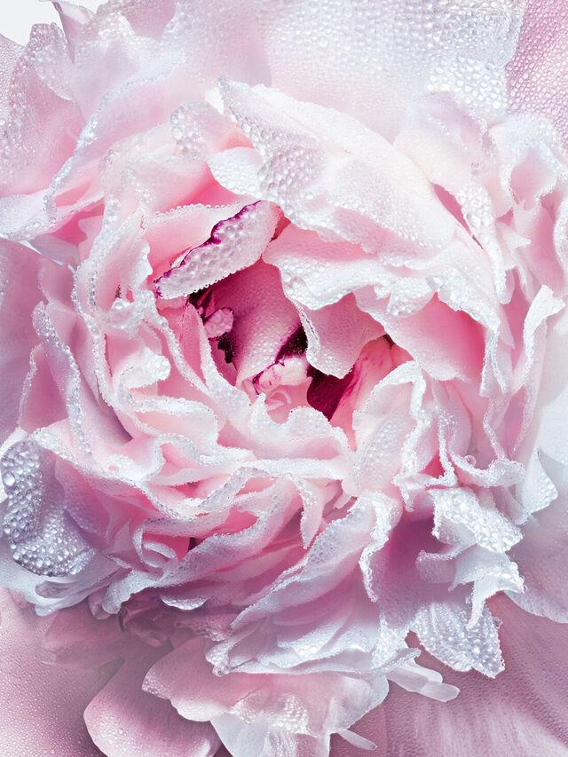 Miss Dior Silky Body Mist 100ml