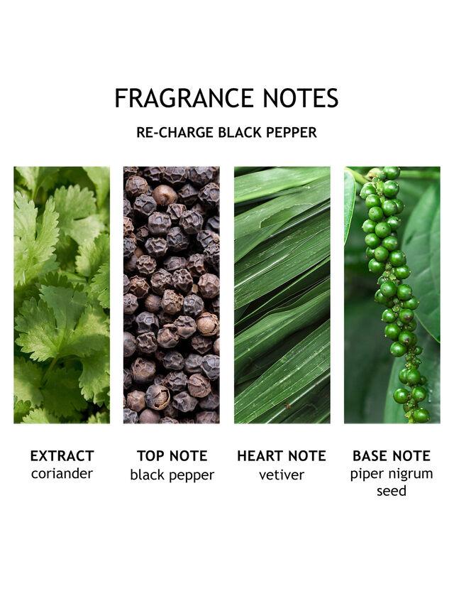 Re-charge Black Pepper Fine Liquid Hand Wash
