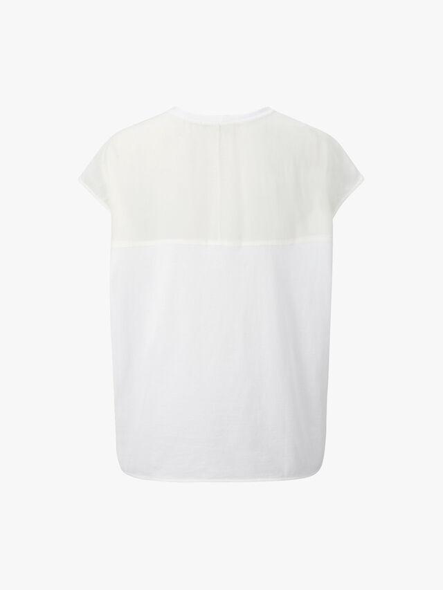 Darwin Monkey T-Shirt