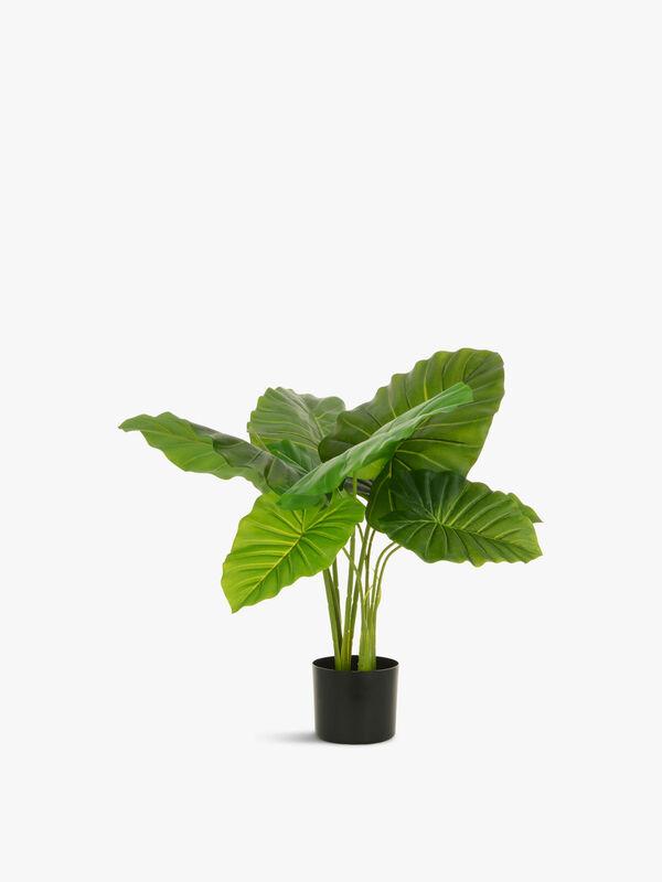 Philo Plant Pot