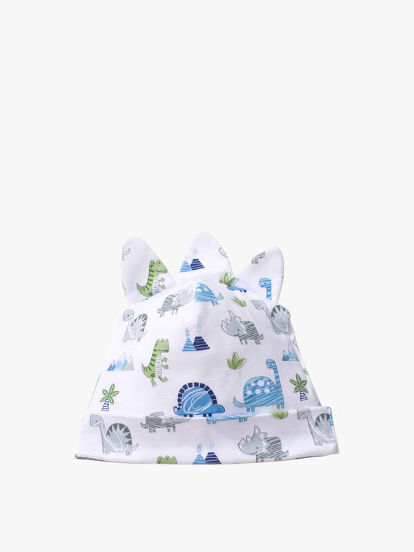 Dino Crew Hat
