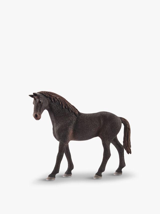 English Thoroughbred Stallion