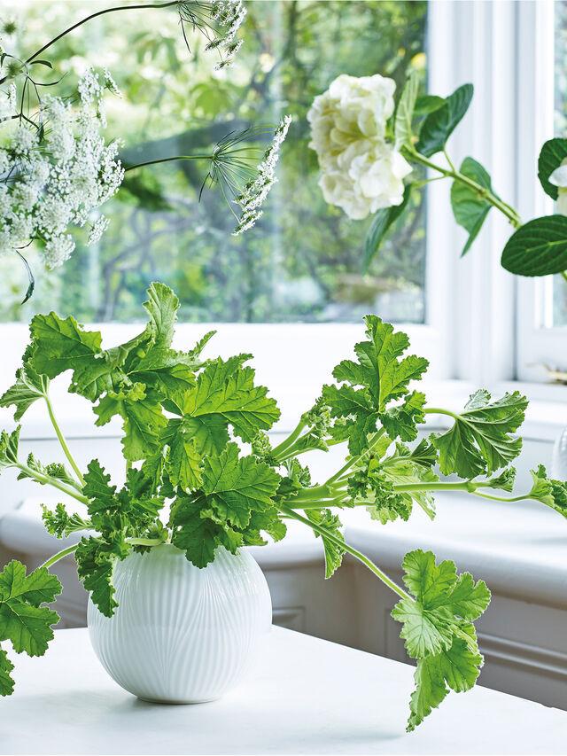 White Folia Bulb Vase