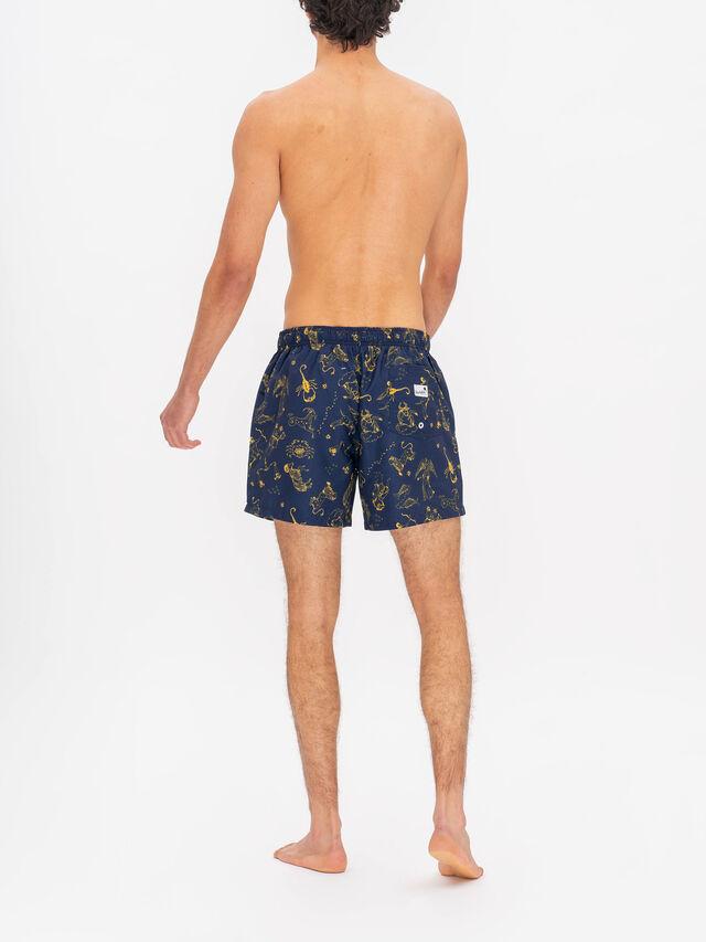 Zodiac Swim Shorts